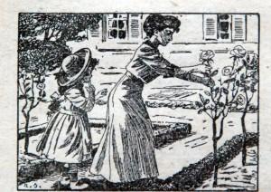 Enterrer le cordon au pied du rosier