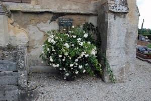 Albéric Barbier, cimetière Mittois 14