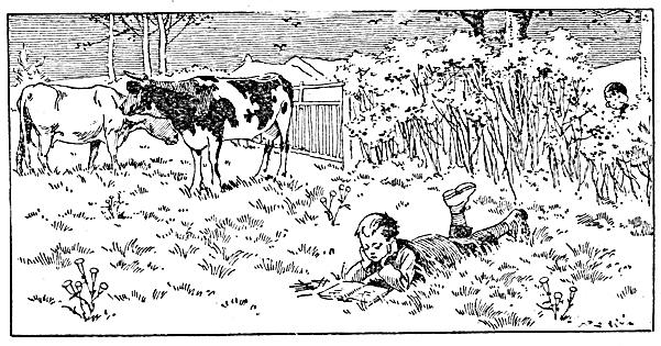enfant-vaches